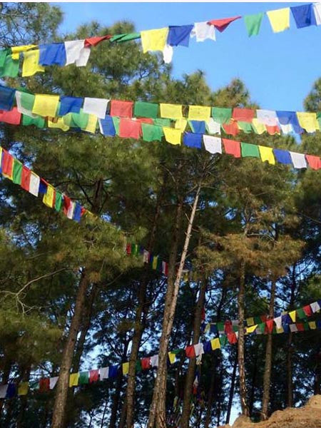 Prayer Flag (Large)