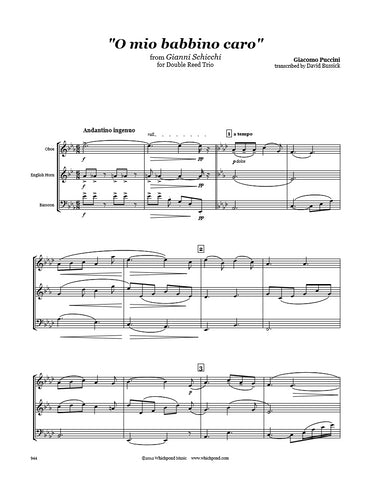 1_62a034e3 916c 4d98 b864 ff53e248d424_large?v=1488259904 puccini o mio babbino caro oboe english horn bassoon trio Parts of the English Saddle and Bridle at readyjetset.co