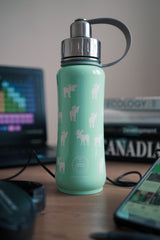 500 ml insulated Moose bottle, teal colour bottle, 500 ml Teal Moosed Up insulated vacuum stainless steel leak-proof water bottle carrying handle silver lid, cute bottles, stylish bottles, Canadian bottles, Canadian bottle distributor, Canadian bottle brand, wholesale bottles, bottles wholesaler, water bottle, steel bottle, thermas bottle, bottle container, cute designs bottle, moose bottle, bottle with moose images
