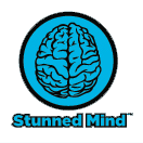 Stunned Mind
