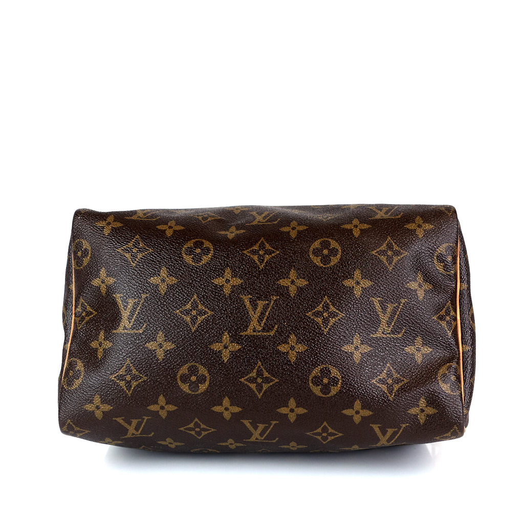 Speedy 25 Monogram Canvas Bag
