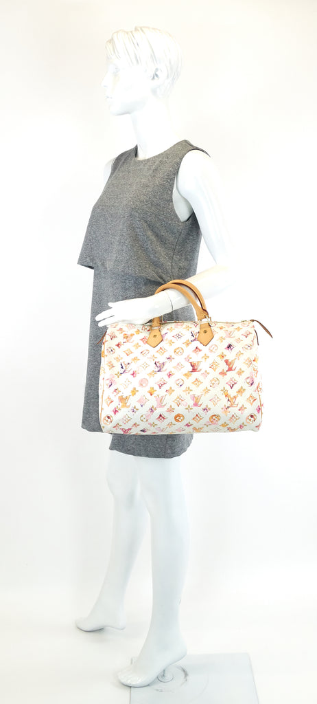 Speedy 35 Aquarelle Monogram Canvas Bag