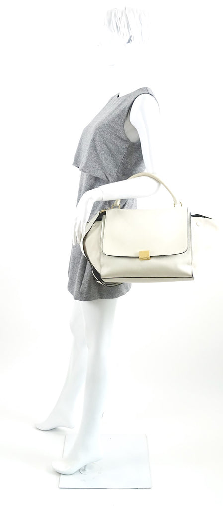 Trapeze Leather and Suede Handbag