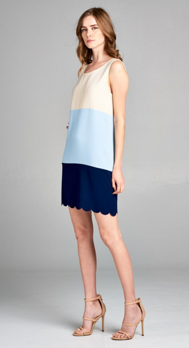 Sleeveless Color Block Shift Dress