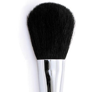 Brandon - Powder Brush