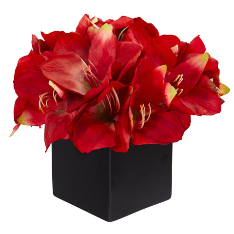 "9"" Exotic Amaryllis Arrangement With Black Matte Vase - foodgles-supermarkets"