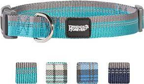 Friends Forever  Reflective Pet Collar