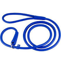 Slip Leash, Extra Strength Nylon