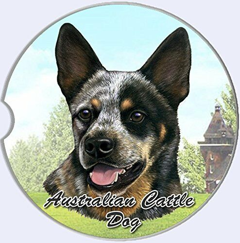 Australian Cattle Dog Coaster