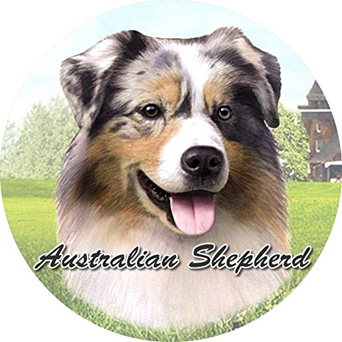 Australian Shepherd Car Coaster