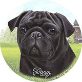 Black Pug Car Coaster