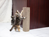 Kitty Corner Cat Scratcher