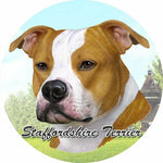Staffordshire Terrier Car Coaster