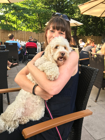 Cockapoo having a cuddle with a lady
