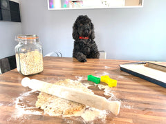 cockapoo homemade dog biscuit recipe