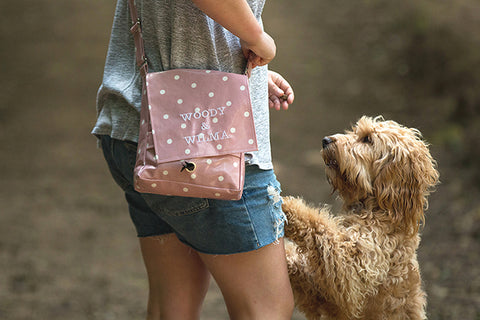 Cockapoo walking with lady carrying a dog walking bag