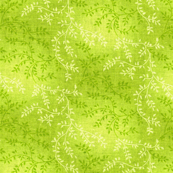 "Galaxy 108"" Wide Quilt Backing GALCHAQB-610 @ $14.00 / Yard"