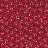 "Galaxy Patriotic 108"" Quilt Backing @ $14.00 / Yard"