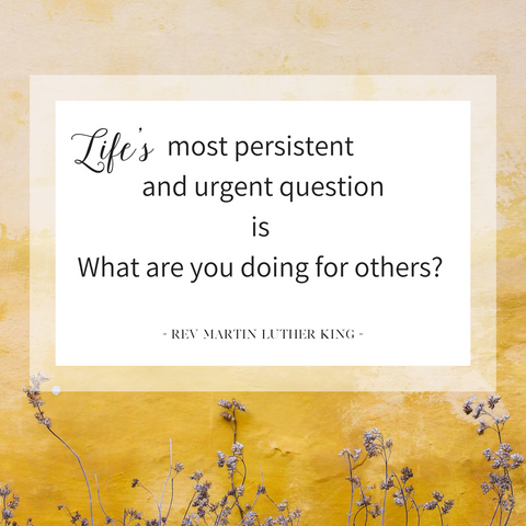 martin-luther-king-quotation-about-kindness-service-to-others-pebble-and-rose-blog-image