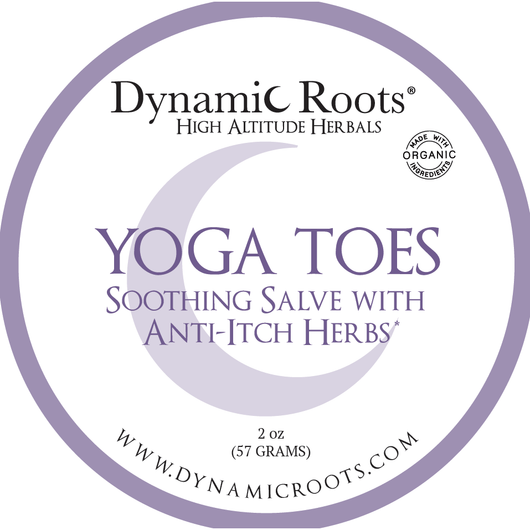 Yoga Toes: Soothing Salve with Anti-Itch Herbs