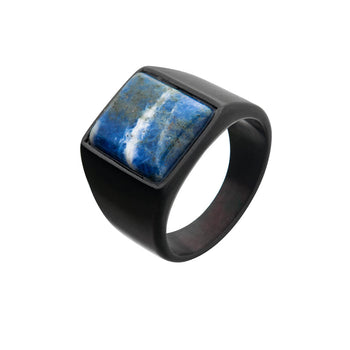 TERRA FIRMA Black Steel and Blue Sodalite Signet Ring for Men