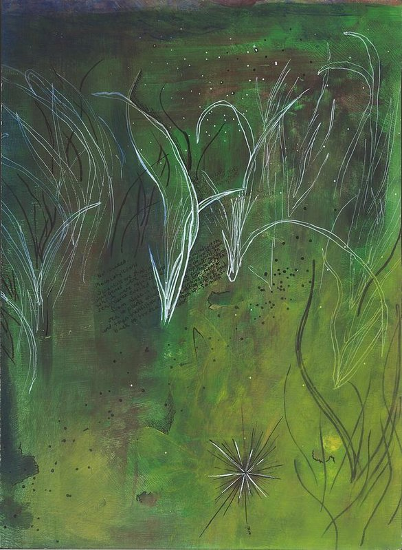 Mutualism Seagrass Beds - Art Print