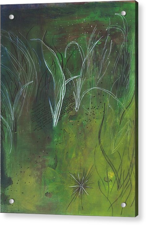 Mutualism Seagrass Beds - Acrylic Print