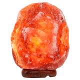Medium Pair of Pink Himalayan Salt Lamps