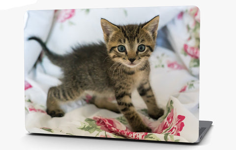 Kitten on a Blanket Vinyl Laptop Computer Skin Sticker Decal Wrap Macbook Various Sizes