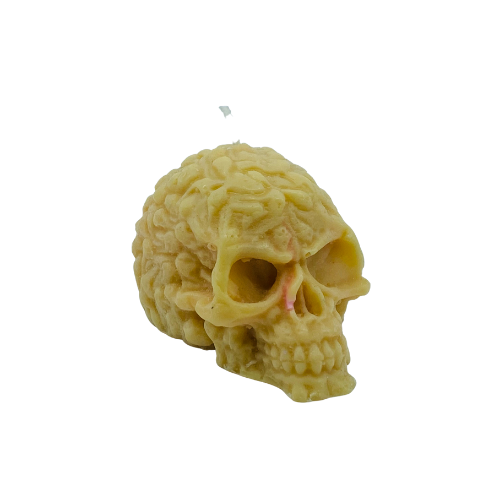 Skull Regular OG, Ivory Birthday Cake