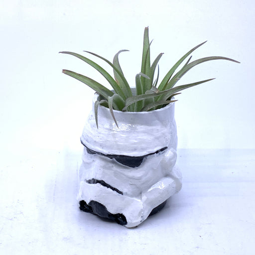 Stormtrooper Small Air Plant Holder - The Candleman's Natural Candles