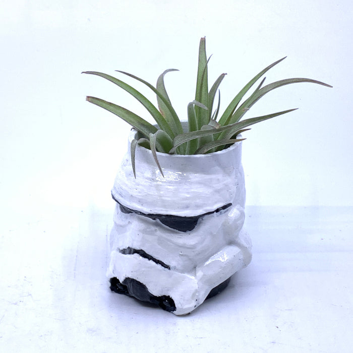 Stormtrooper Small Air Plant Holder