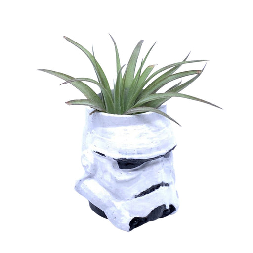 Stormtrooper Medium Air Plant Holder - The Candleman's Natural Candles