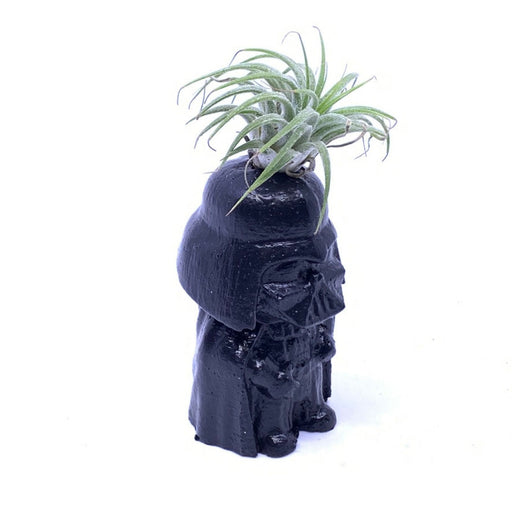 Darth Vader Standing Air Plant Holder - The Candleman's Natural Candles