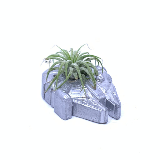 Millenium Falcon  Air Plant Holder - The Candleman's Natural Candles