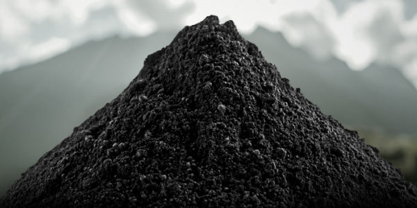 Shilajit - The Secret Resin Of The Tibetan Monks