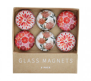 Glass Magnets - Fruits + Flowers