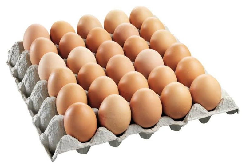 "Egg Tray ""30 Cell"""