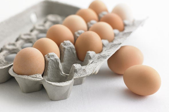 "Egg Carton ""12 Cell"""