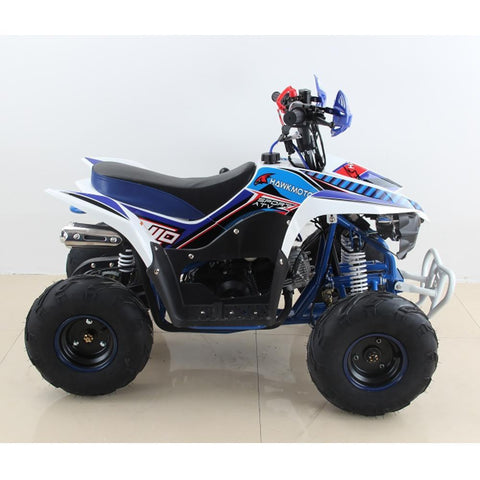 Hawkmoto 110cc Wasp Kids Quad Bike - Blue 3