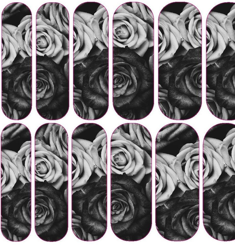 Black & White Rose Decals