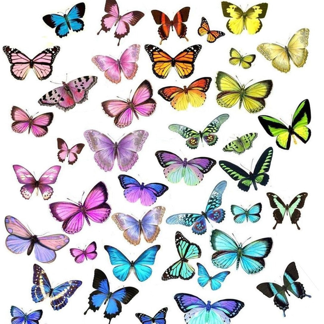 Butterfly Spectrum Decals - CLEAR