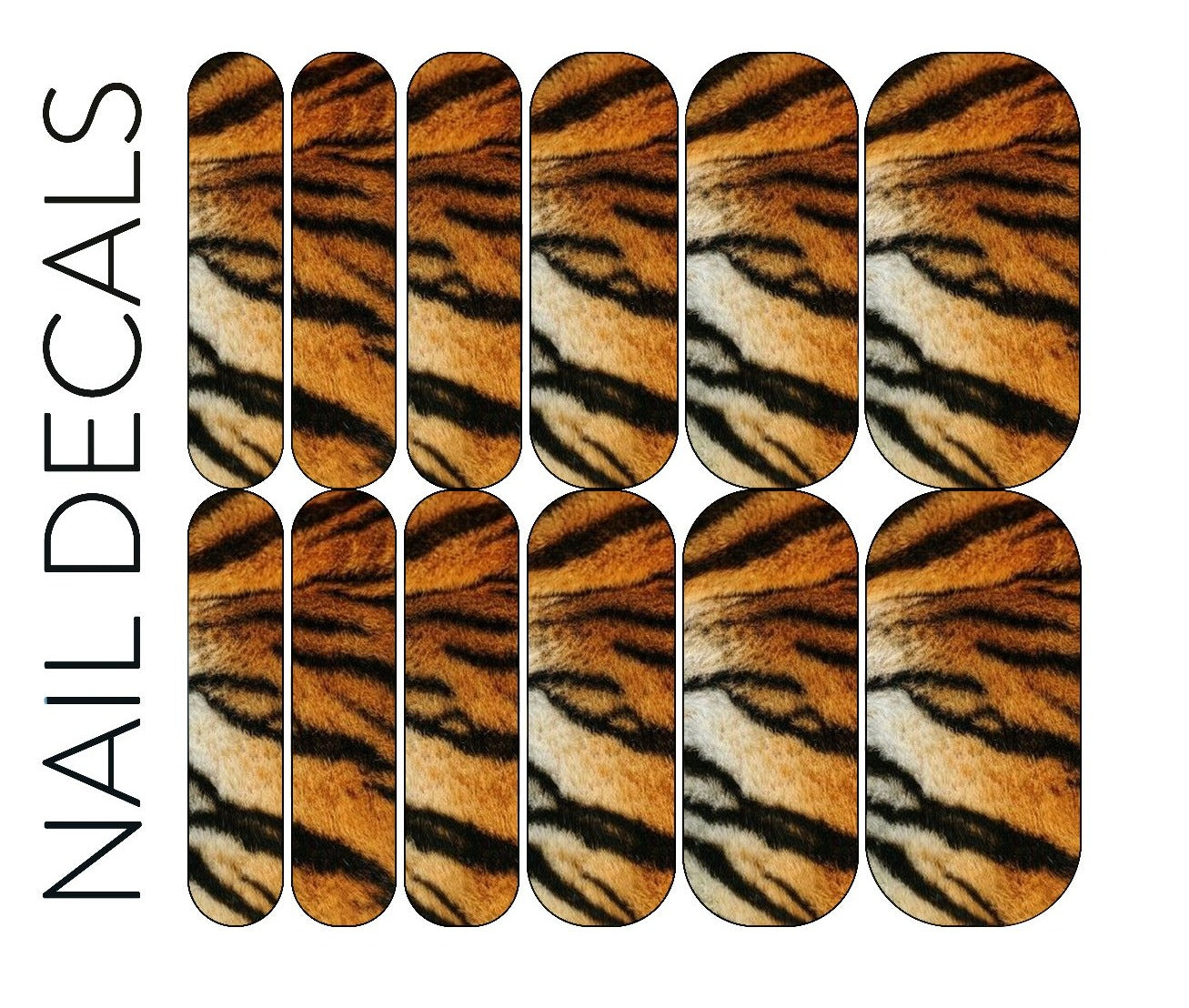 Tiger Encounter Decals
