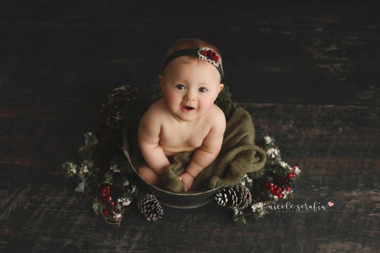 rustic galvanized steel pail with little sitter girl getting Christmas photos taken