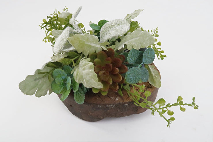 small succulent plant and carved wooden riser for photography accent in studio