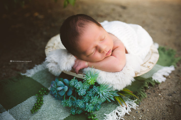 newborn baby boy or girl on white faux rabbit skin pelt in white bowl and succulents. outdoor shoot