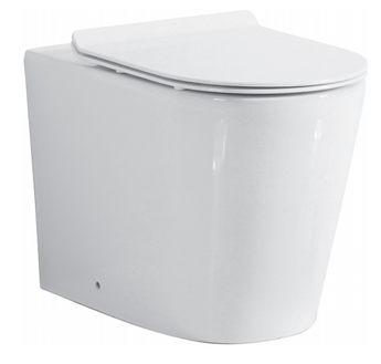 Round Back to Wall Pan Rimless Flush