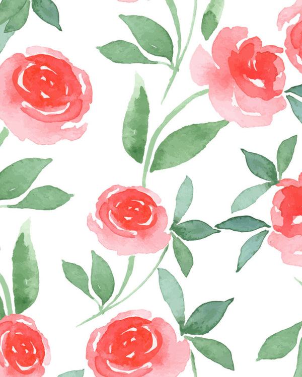 Pink Rose Watercolor Wallpaper