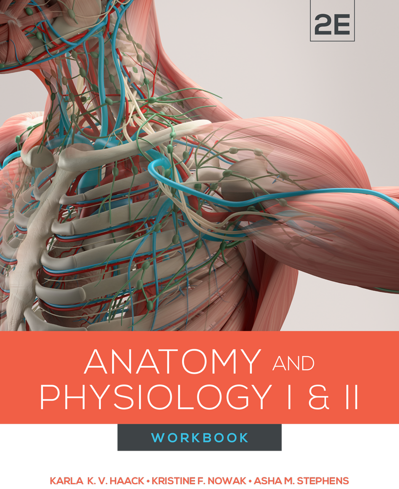 BIOL 2221L/2222L: Anatomy and Physiology I & II Workbook, 2E (Top Hat Bundle - Fall 2020)