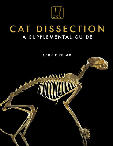 Cat Dissection - A Supplemental Guide